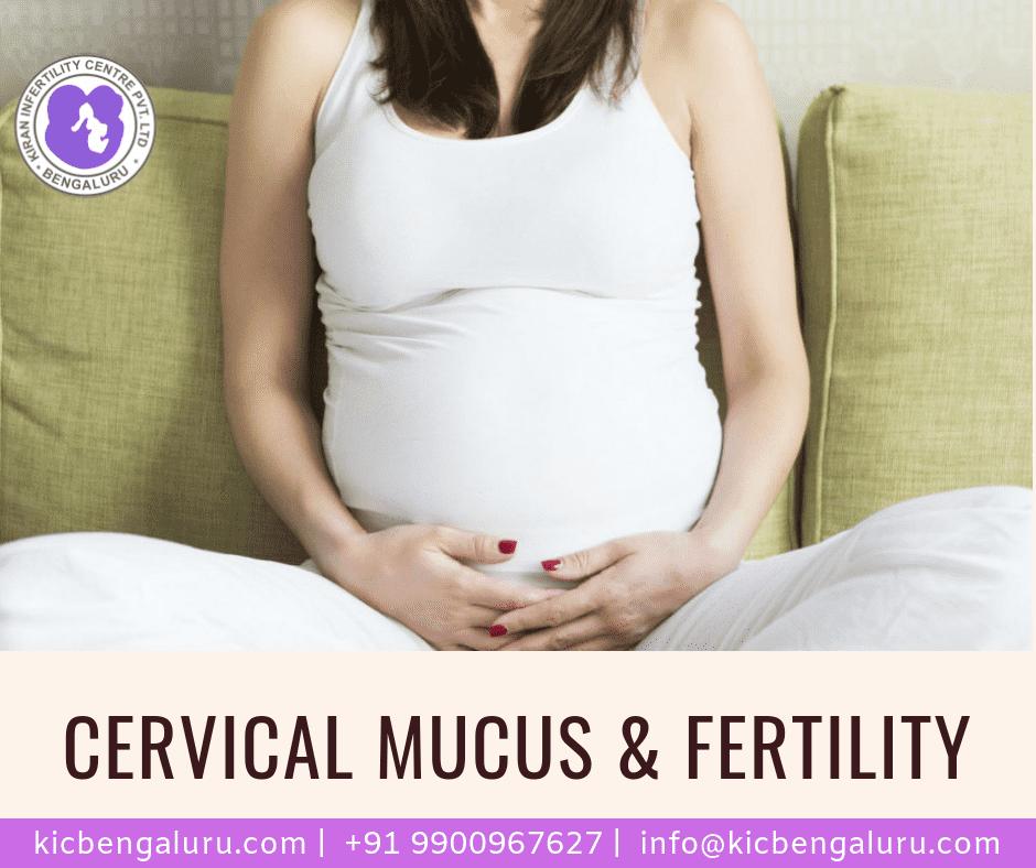 Cervical mucus & Fertility