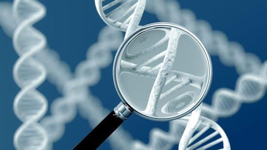 pre-implantation genetic screening