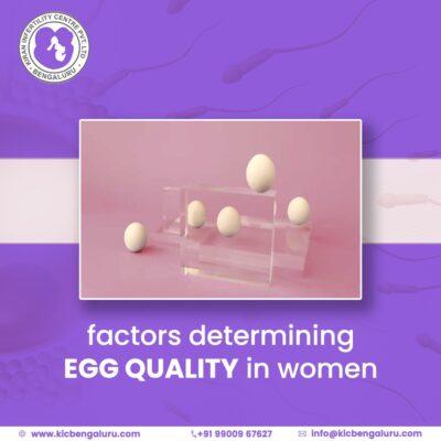 Factors determining egg quality in women